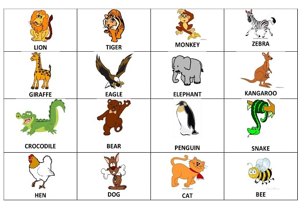 imparare-l-inglese-flashcards-per-bambini