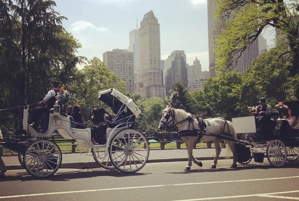 new-york-giro-in-carrozza