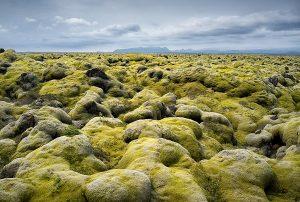 islanda-tour-eldhraun