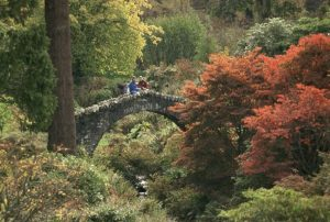 botanic-garden-tour-scozia-con-auto