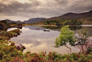 tour-in-auto-irlanda-kerry-killarney