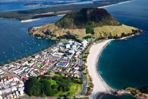vacanze-studio-adulti-tauranga-nuova-zelanda