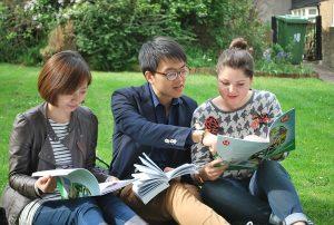 twickenham-scuola-di-lingua-inglese