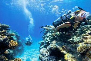 diving-per-esperti-malta