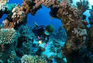 pacchetti-immersioni-diving-per-esperti-a-malta