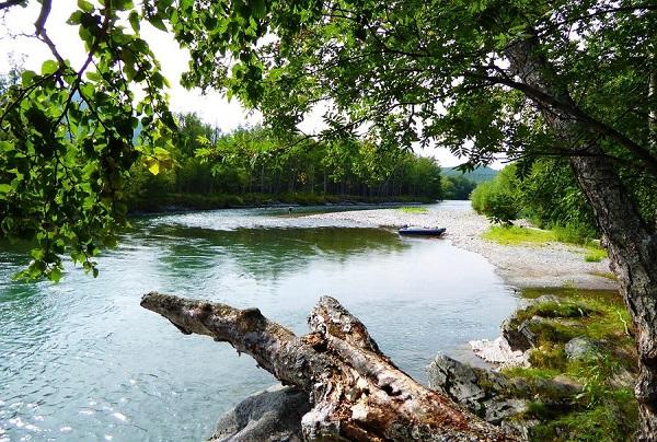 pescare-in-irlanda-fishing-break-nella-regione-dello-shannon